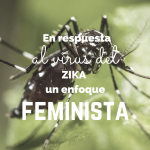 Copy of ZIKA feminist