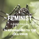 ZIKA feminist